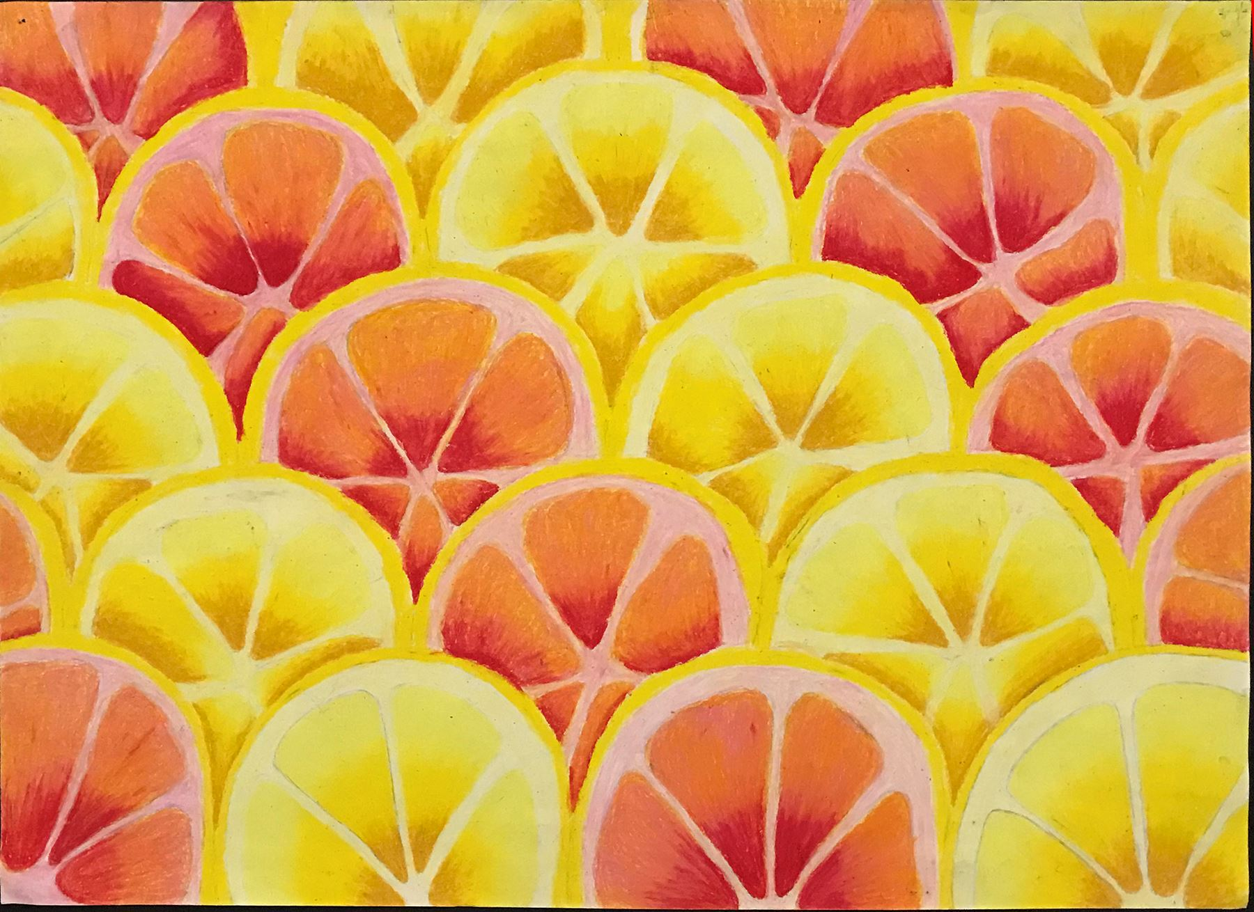 an oil pastel of slices of citrus fruit arranged symmetrically and in a pattern in yellows and reds