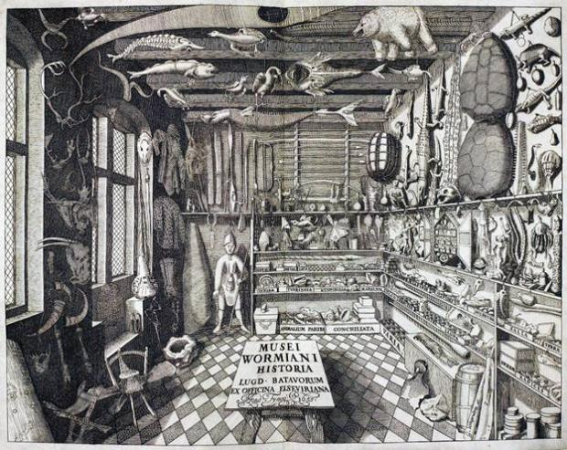 a black and white etching of the interior of a cabinet of curiousity